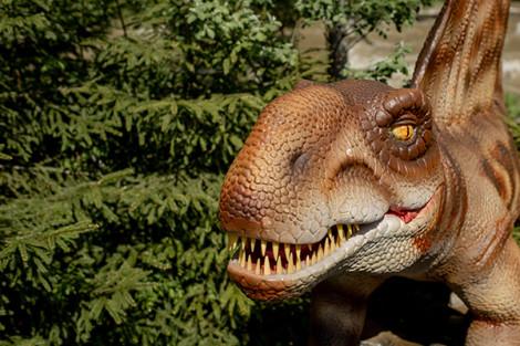 Se você gosta de dinossauros, vai gostar deste lugar
