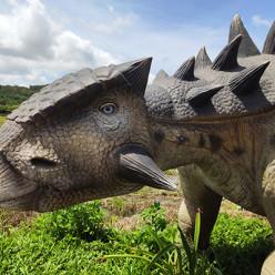 Você sabe como os nomes dos dinossauros são escolhidos?