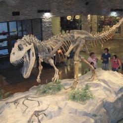 3 passeios para você que gosta de dinossauros